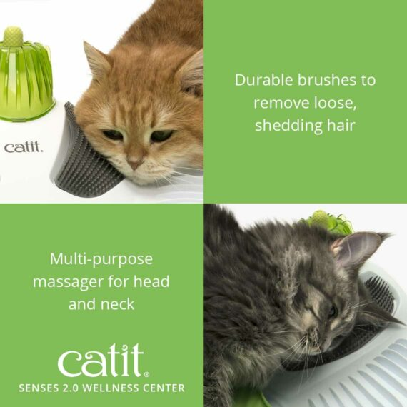 The Wellness Center has dureable brushes to remove loose, shedding hair