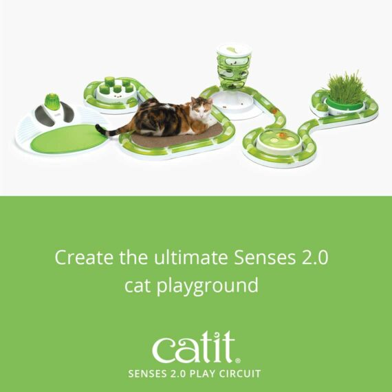 Create the ultimate Senses 2.0 cat playground with the Senses 2.0 Play Circuit