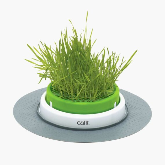 43161 - Senses 2.0 Grass Planter