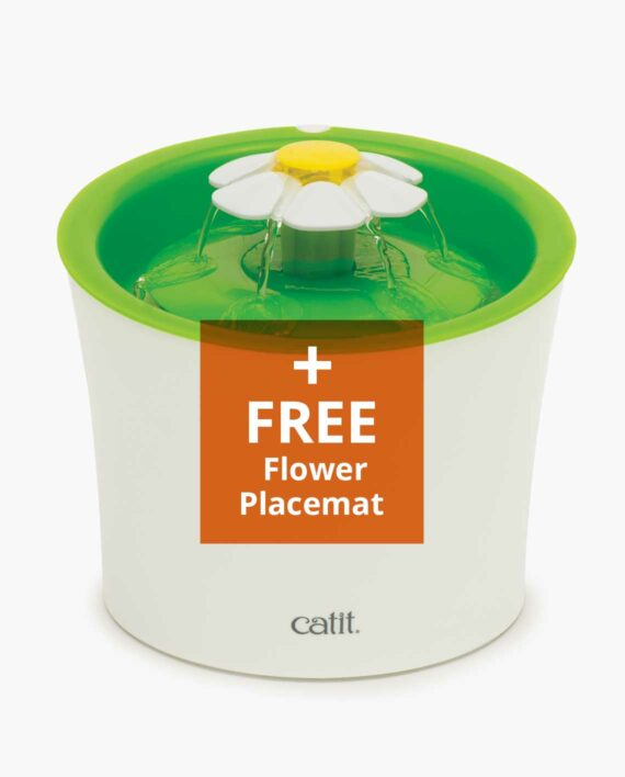 Flower Fountain product with promotion