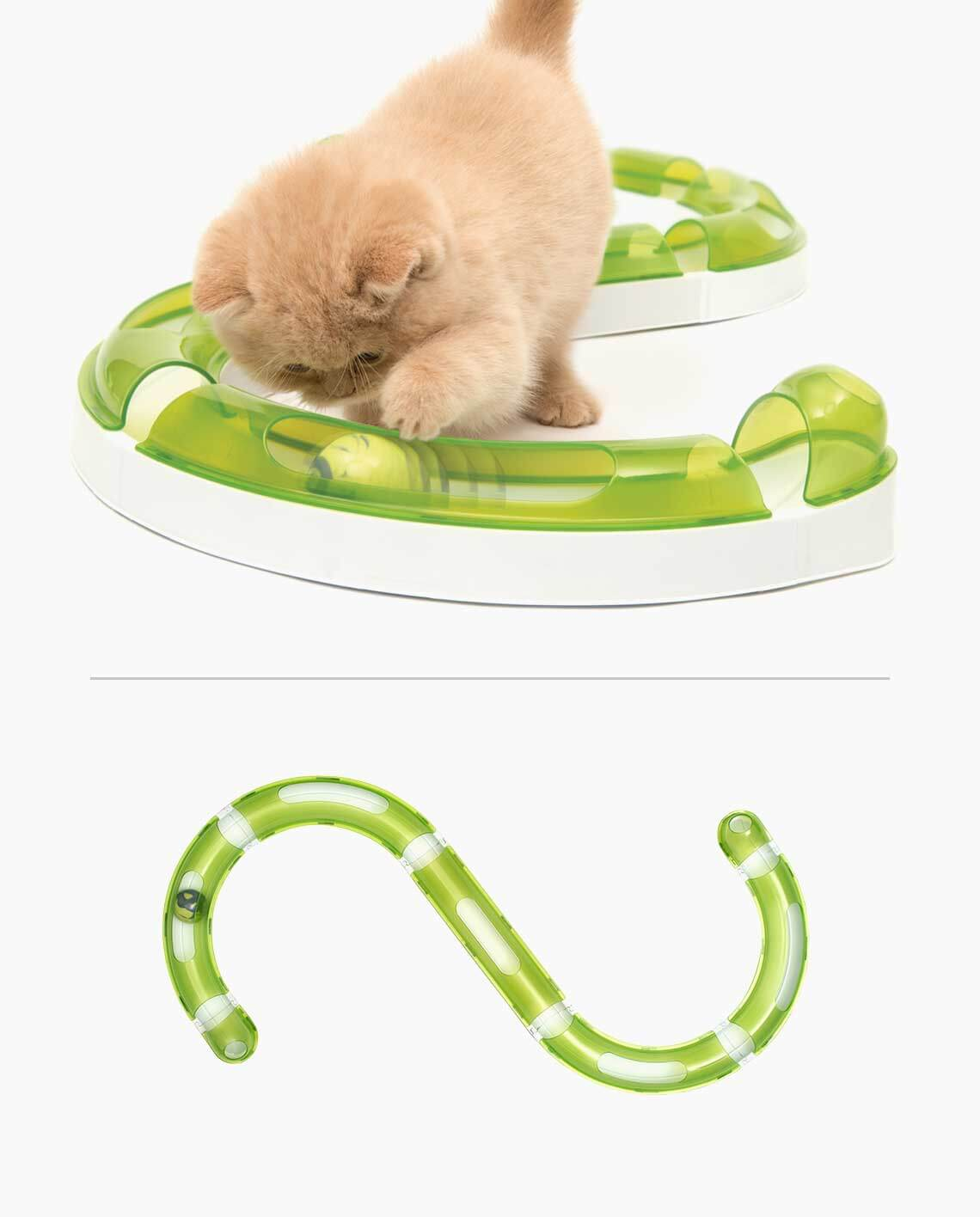 Cat playing with the Senses 2.0 Play Circuit