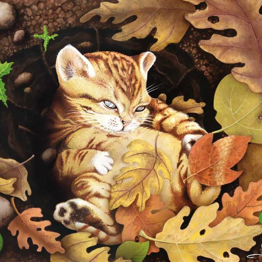 Ginger cat surrounded by autumn leaves