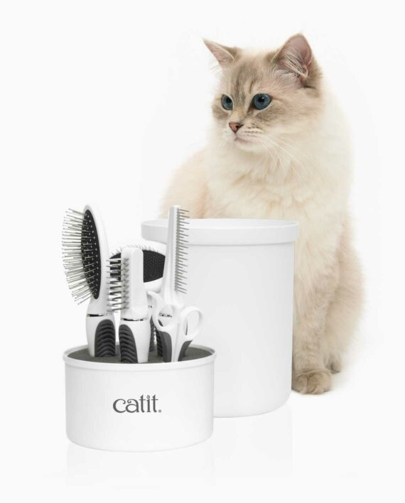 Longhaired cat sitting in front of the grooming kit