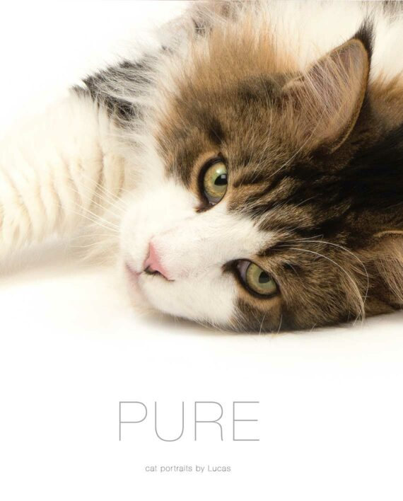Cover of the PURE cat portrait book