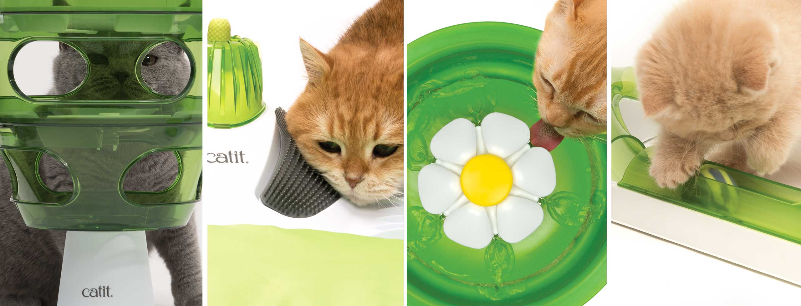 Different images of cats using catit products