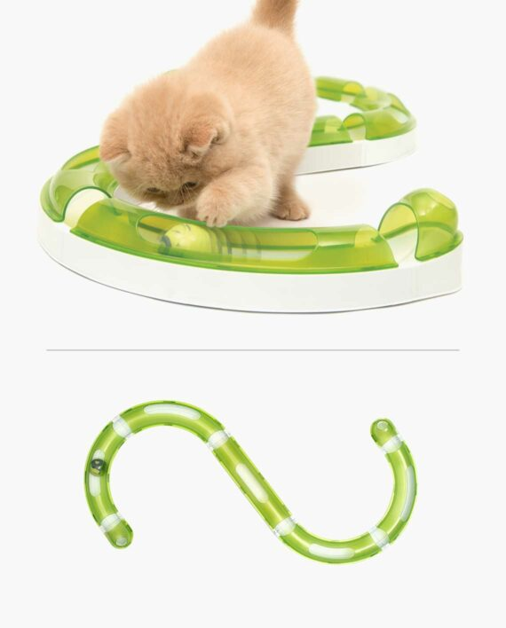 Ginger cat playing with a senses circuit