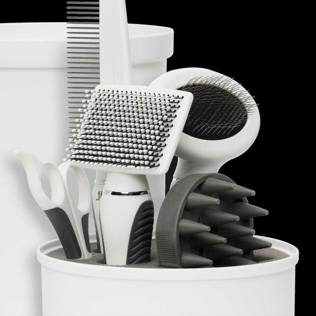 Grooming kit for the shorthair cats