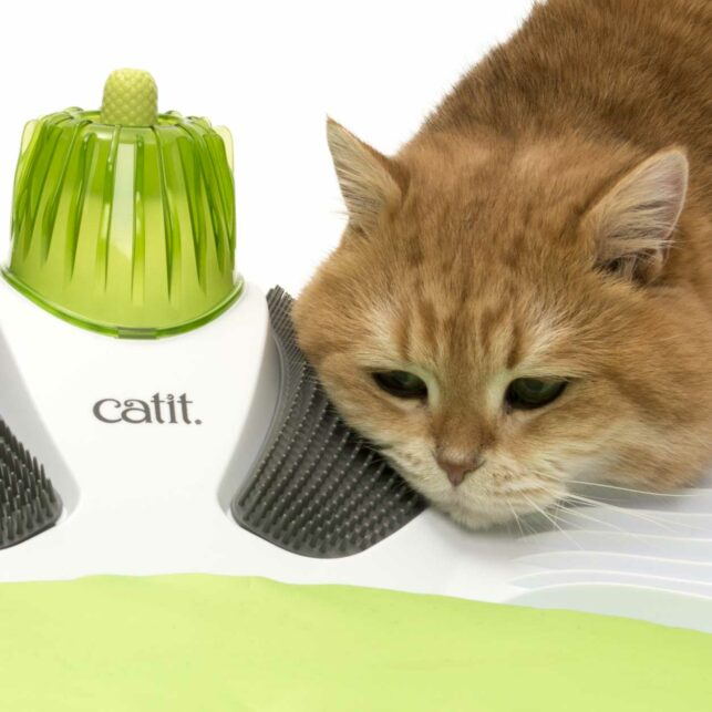 ginger cat grooming herself with the Catit Wellness Center