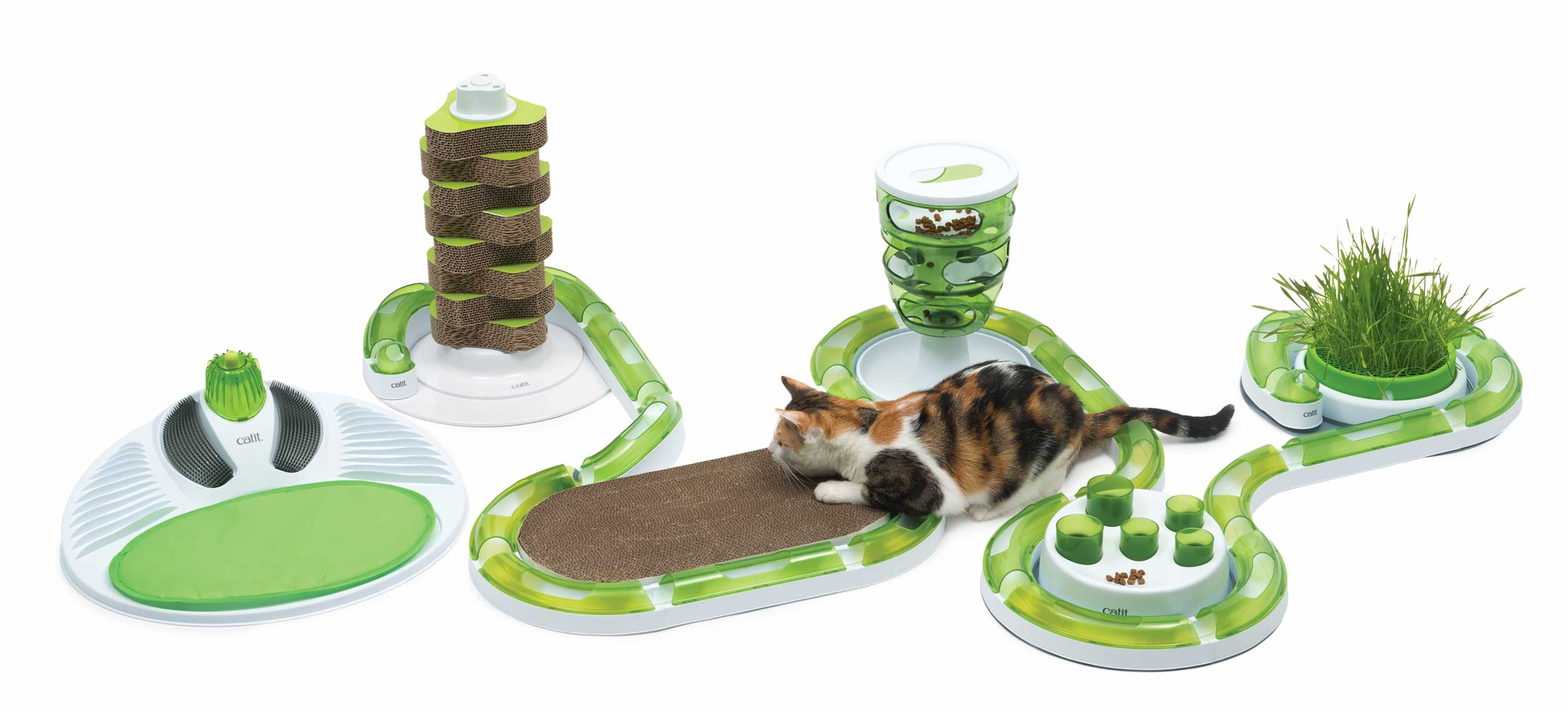 Cat playing with the complete Catit 2.0 senses set