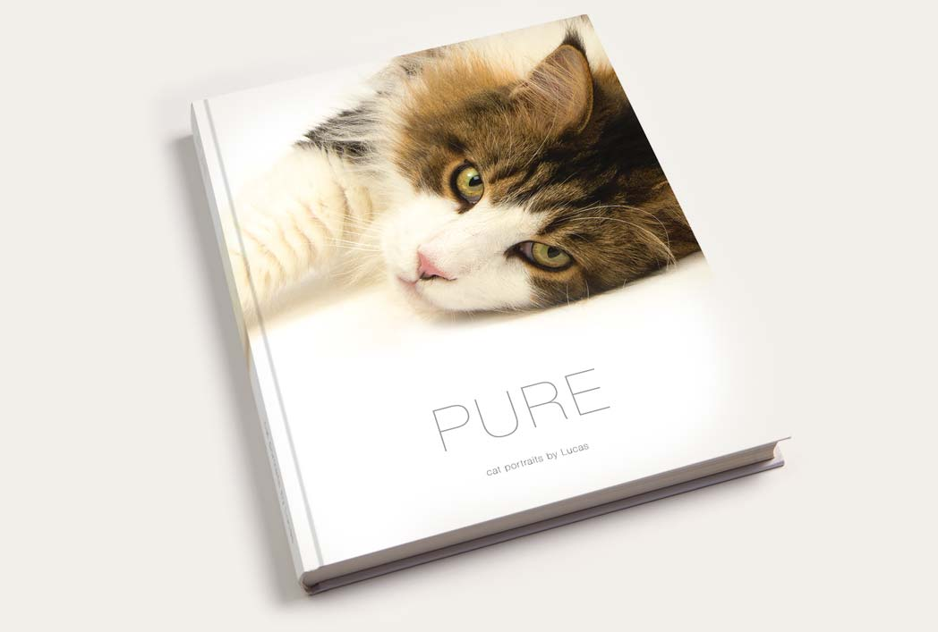 Cover shot of the Pure Cat Book