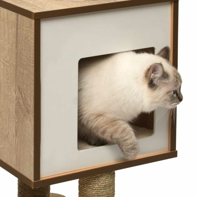 Fuzzy cat coming out of the vesper base oak cubed