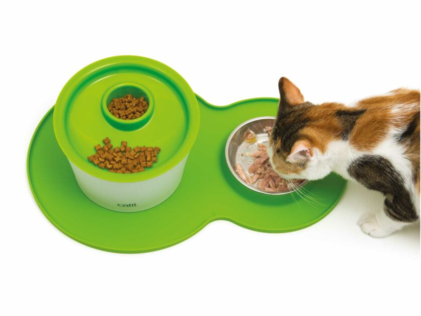 Catit Green Peanut Placemat with Multi Feeder on top