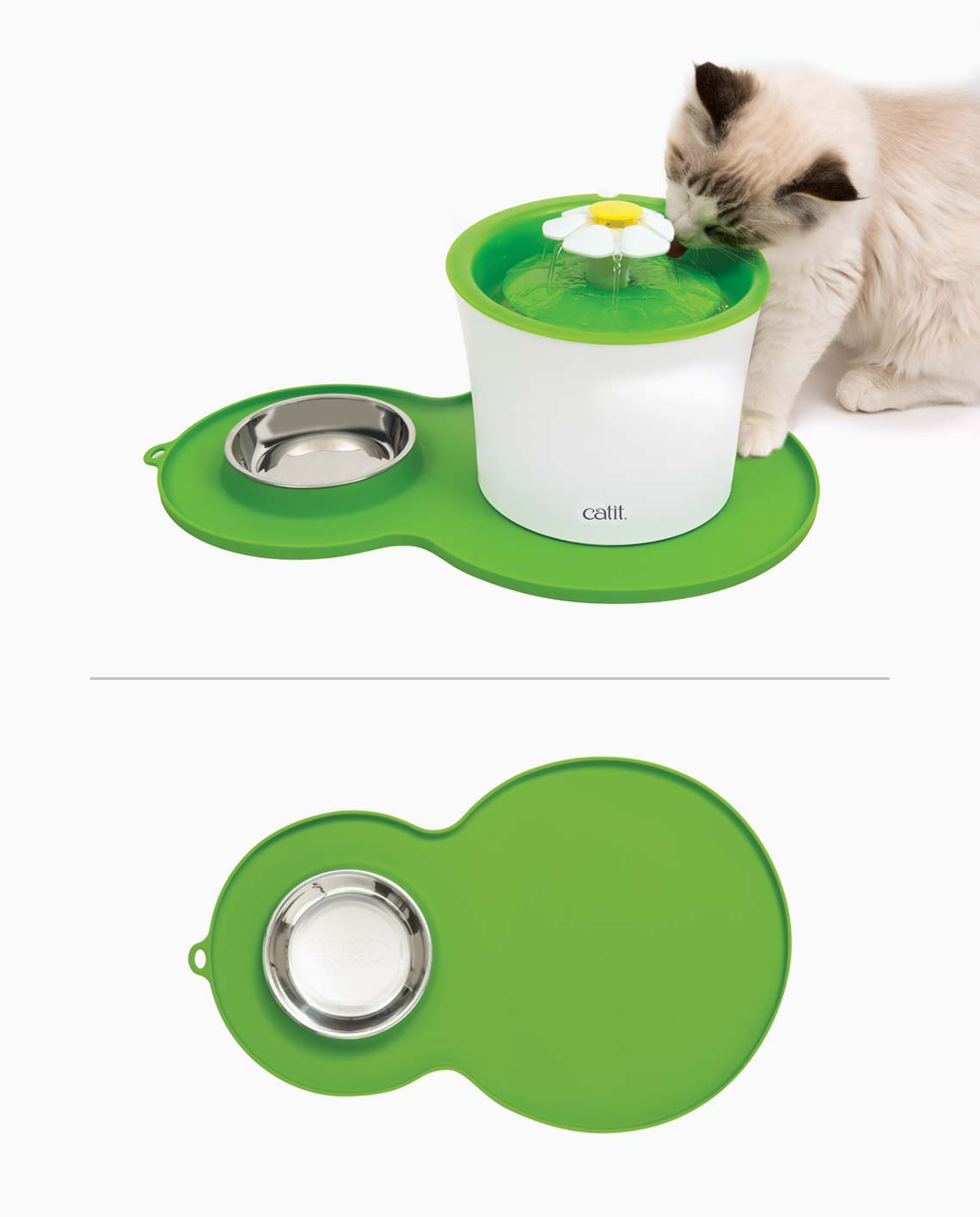 Cute cat drinking from a flower fountain on a peanut placemat