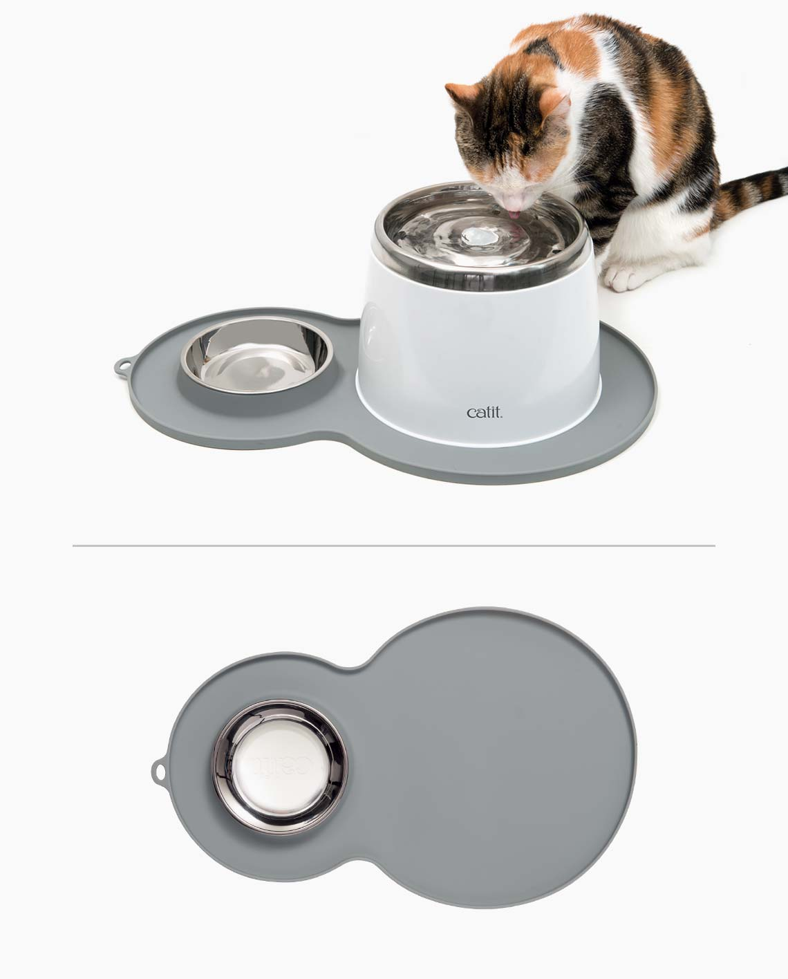 Pixi drinking from a stainless steel drinking fountain on a peanut placemat