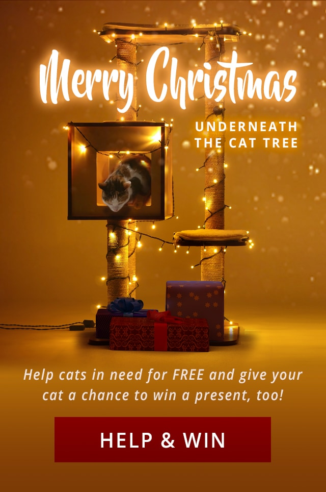 UK_help cats in need and win_mobile