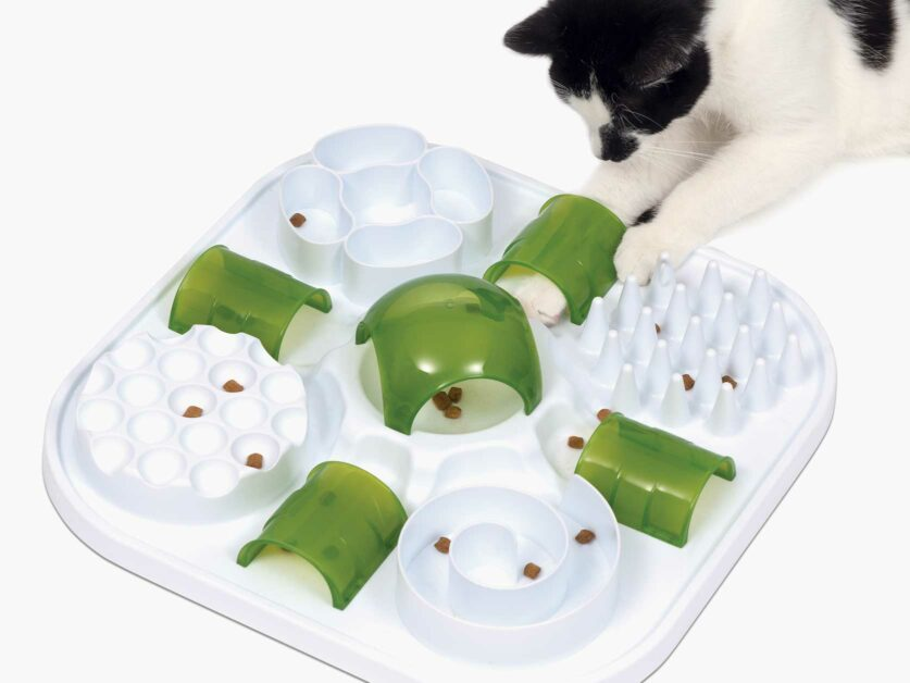 Catit Treat puzzle is a slow feed with 6 fun activities