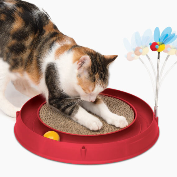 43000 - Circuit Ball Toy with Scratch Pad