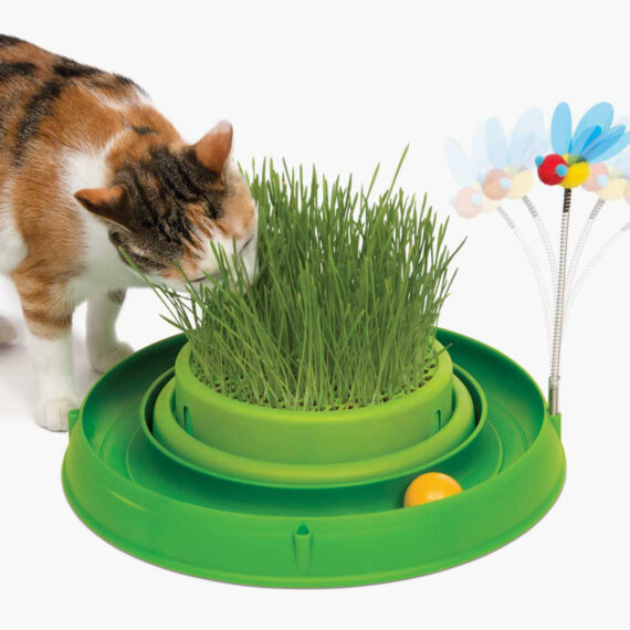 43002 - Circuit Ball Toy with Grass Planter - thumbnail