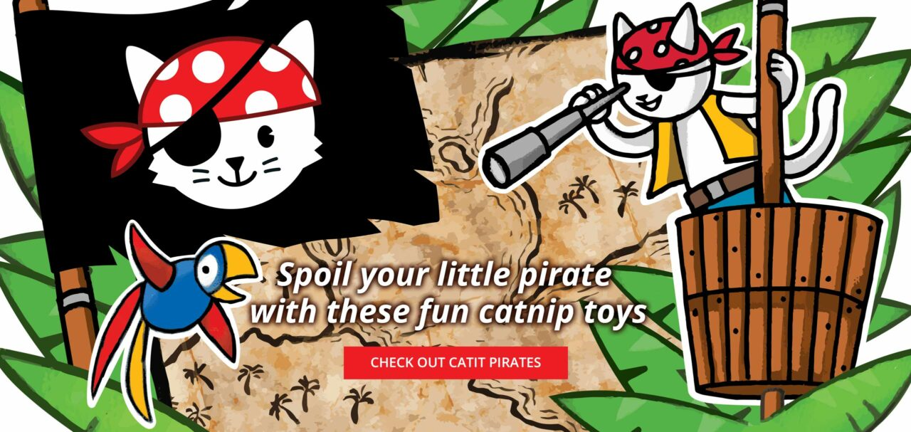 Spoil your little pirate - check out catit pirates