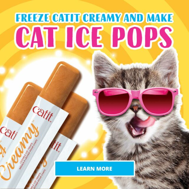 Freeze Catit creamy and make cat ice pops - Learn more
