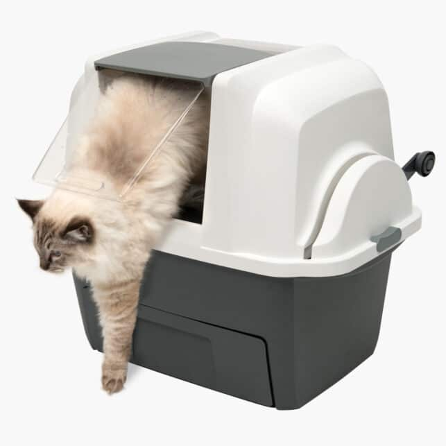 Suitable for cats of all sizes