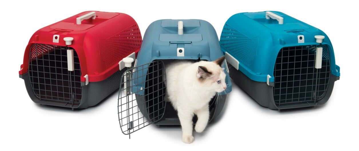 Catit Cat Carrier is available in 3 colours: Cherry Red, Blue-Gray and Turquoise