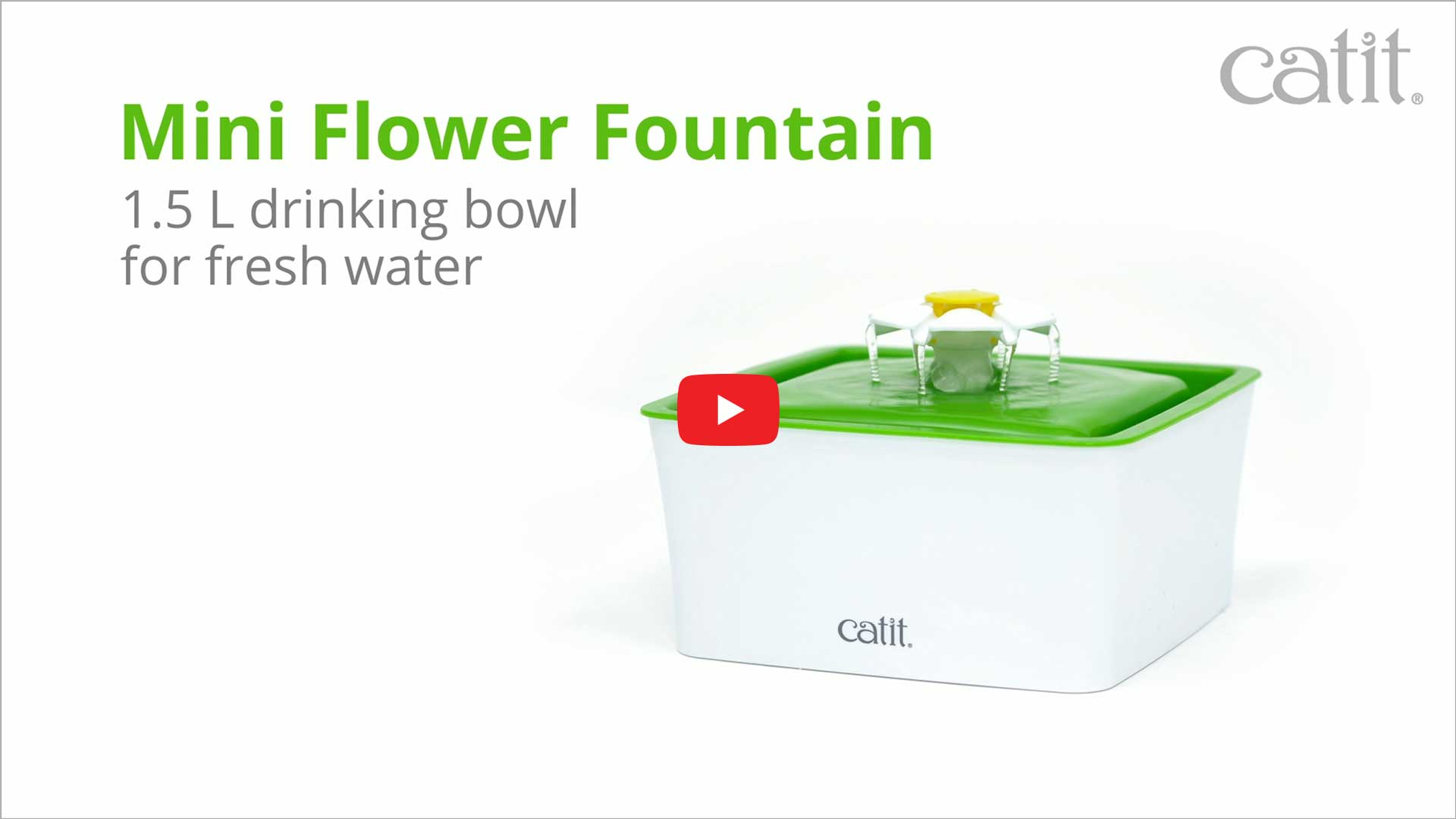 Thumbnail Youtube video LED Flower fountain