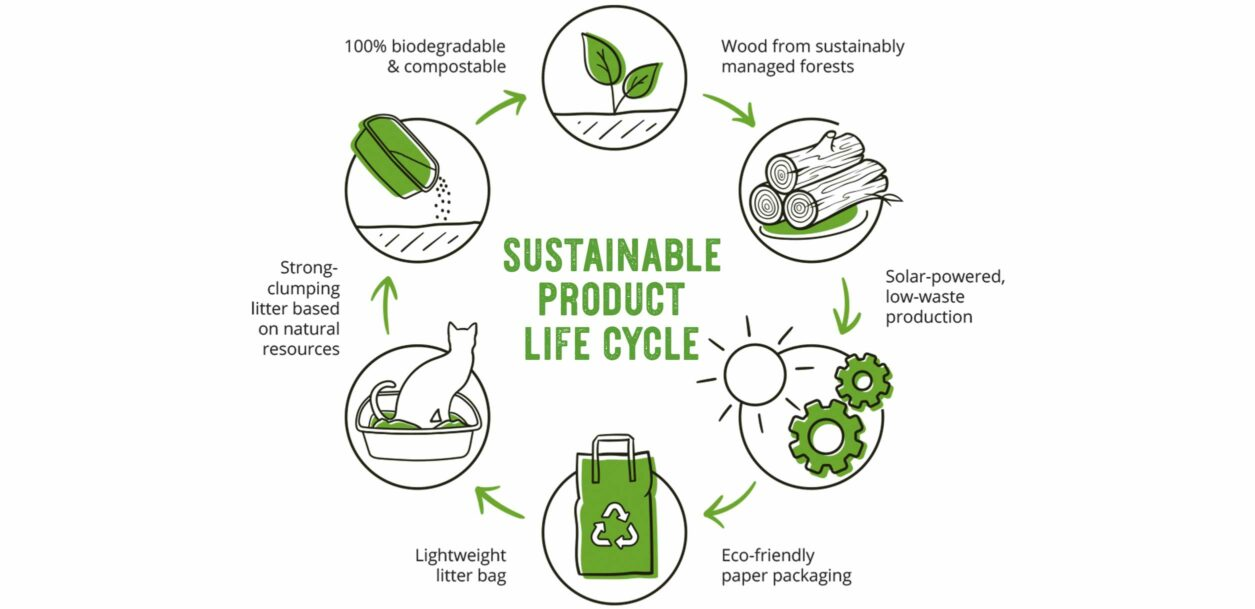 Whether you're just curious about sustainability or ready to completely overhaul your way of life, using eco-friendly products is a great place to start