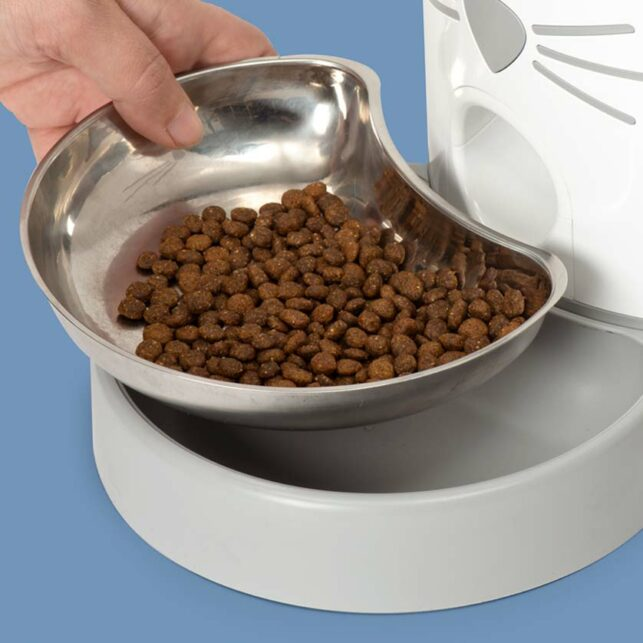 Large stainless steel food dish